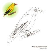 Fotografie Afrikanische Pirol Vogel lerne Vektor zeichnen