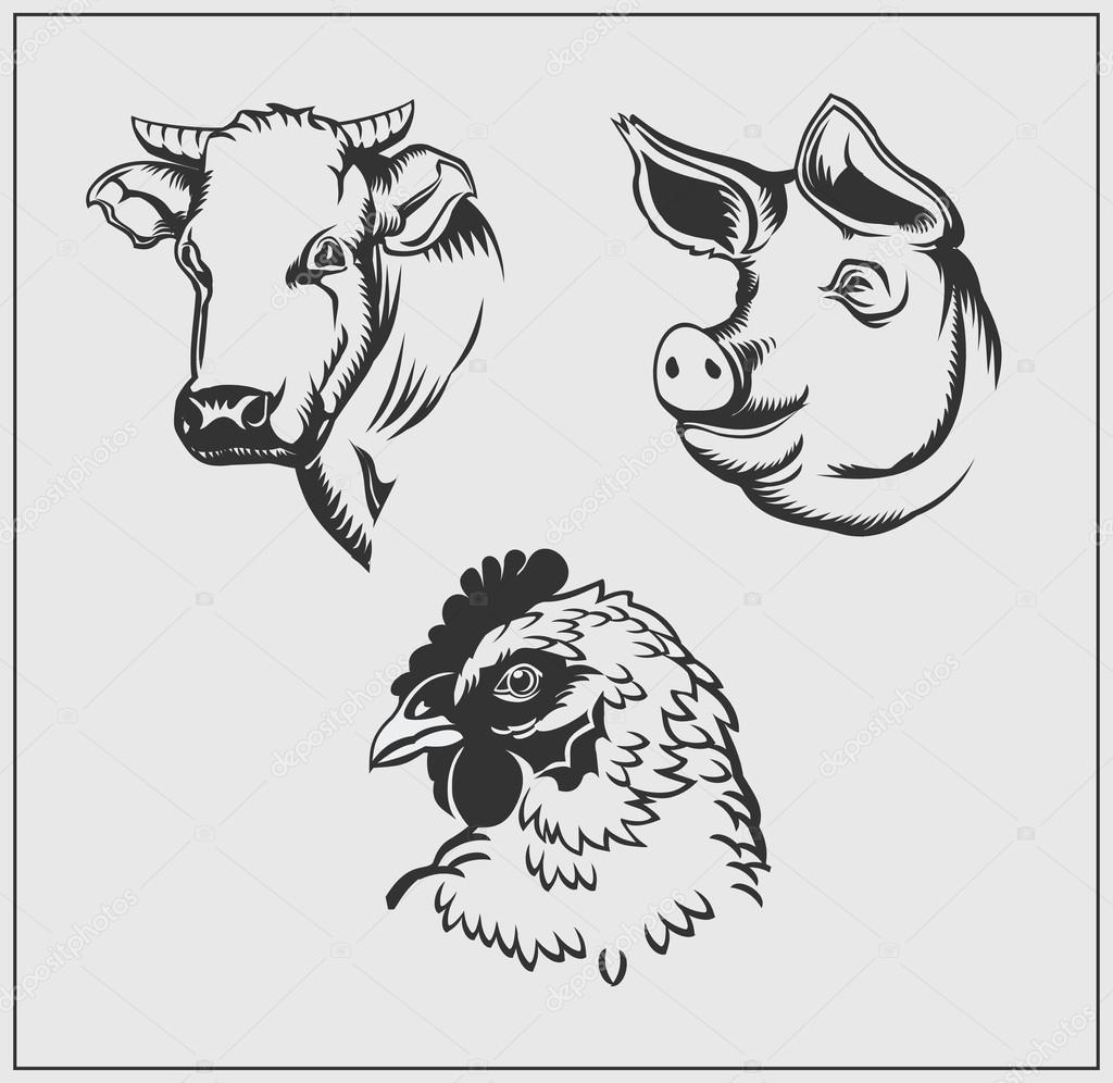 Teste Di Animali Da Fattoria Mucca Maiale E Pollo Bianco E Nero