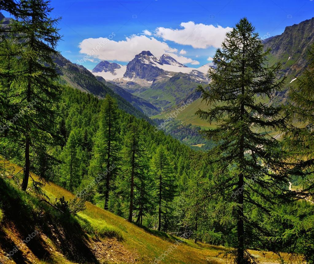 Alpien mountain view on Granta Parey in Aosta Valley