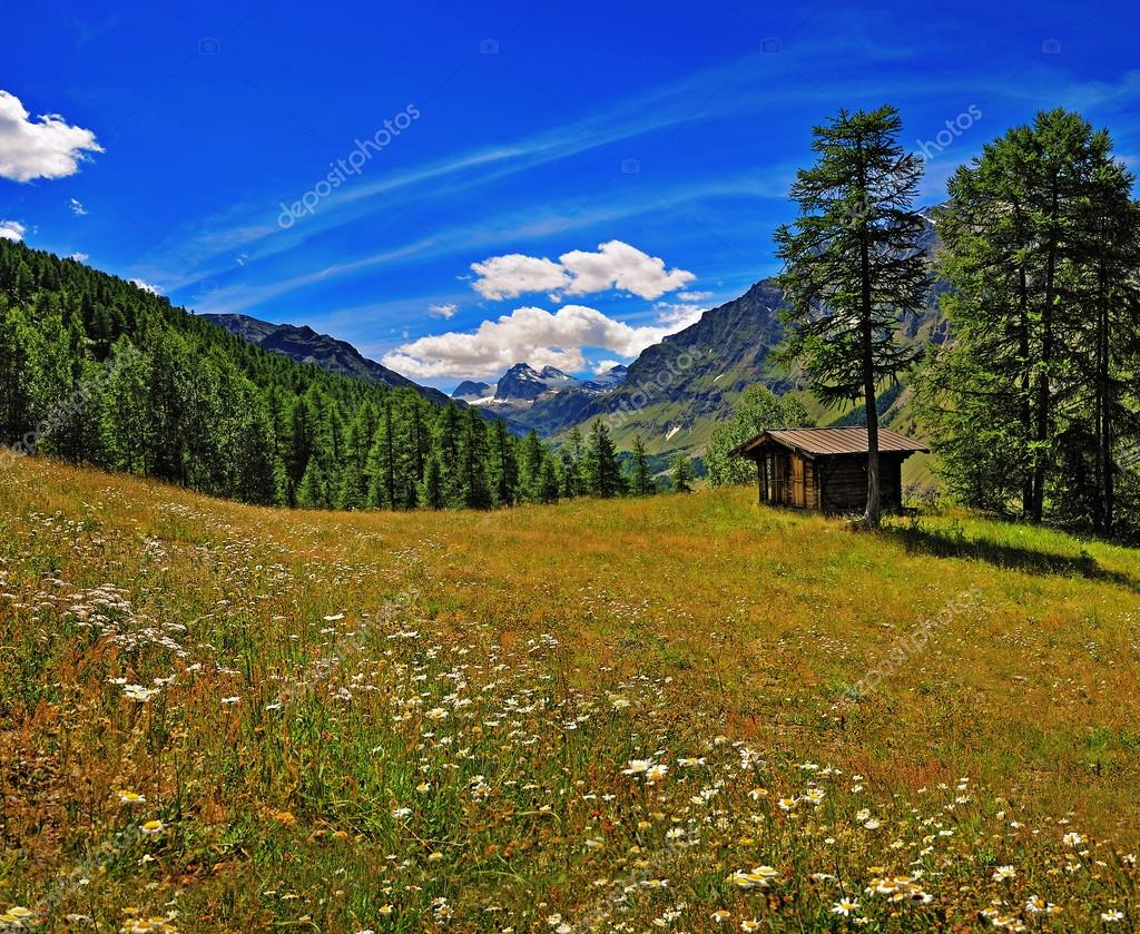 meadow with old alpien house iwith view on Granta Parey