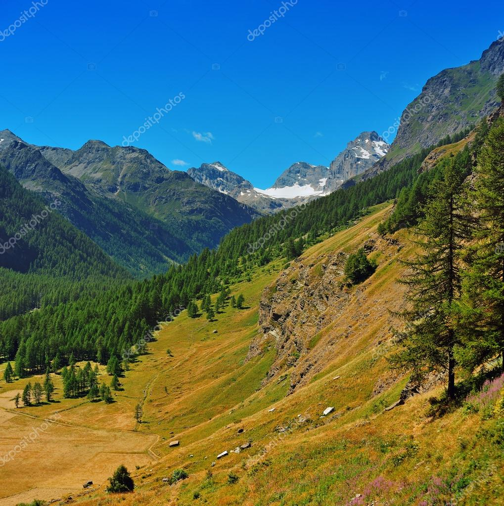 valley in Gran Paradiso National Park