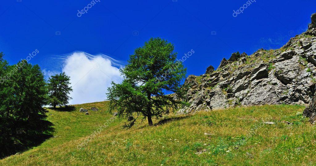 Alpien valley, Gran Paradiso National Park