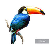 Photo Toucan sitting on tree branch