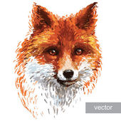 Fotografie Colored fox illustration on white background