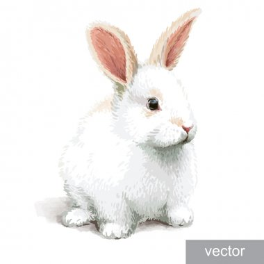 Easter realistic little cute white rabbit illustration. Vector. stock vector