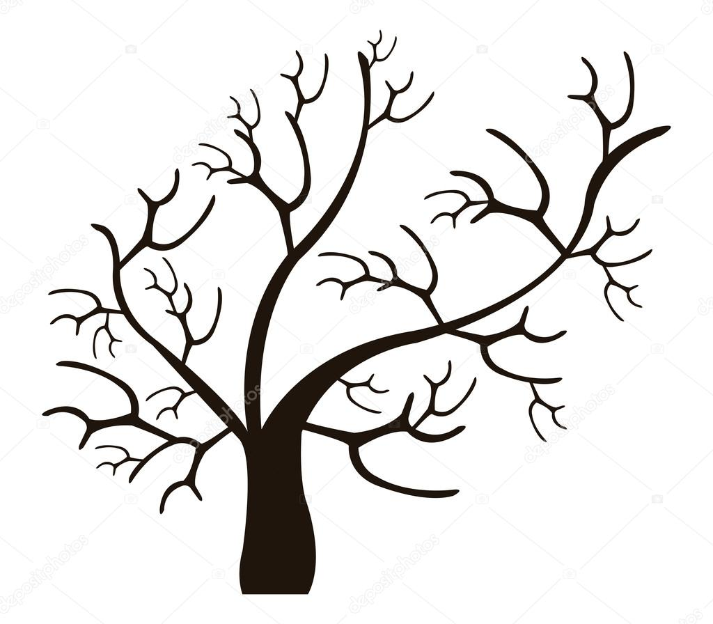 Dry Tree On White Background Stock Photo Marcotrapani 95944624