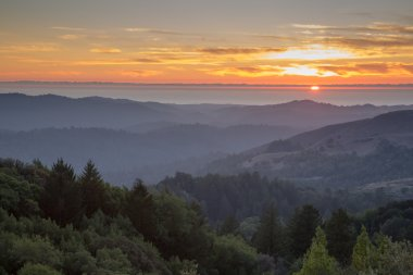 Hazy Forest Rolling Hills Ocean Sunset of Santa Cruz Mountains.