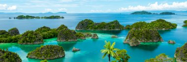 Lonely green islands in turquoise water in Raja Ampat Papua New Guinea