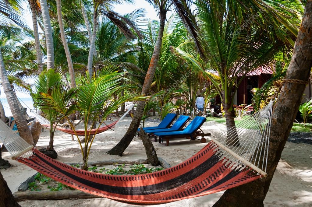 Hammocks and lounger in a Resort Under Coconut Tree Shades at the caribbean white sand beach on Corn Island