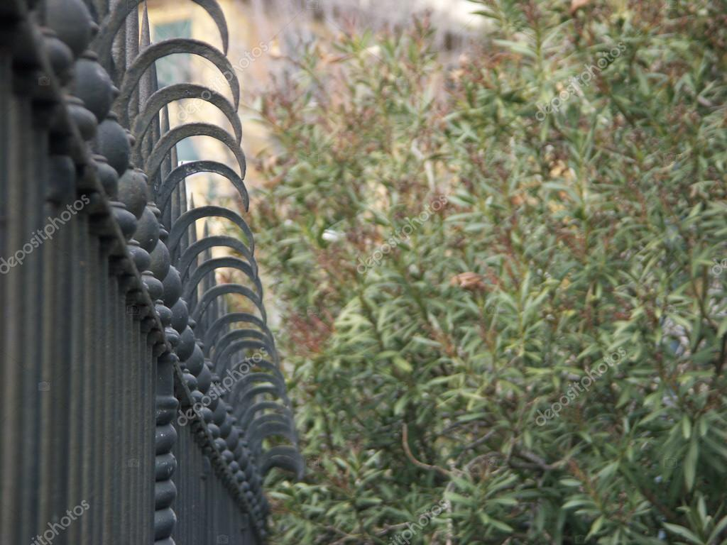 Clôture en métal noir dans un jardin verdoyant — Photographie ...