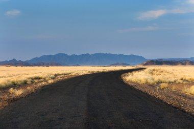 Road in Sossusvlei, Namibia