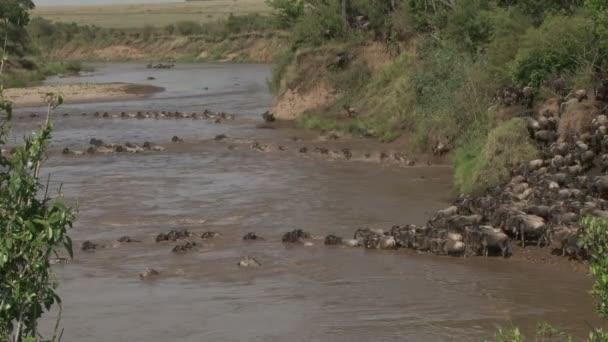 pakoně přes řeku
