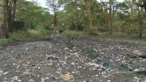 znečištěné řeky v Africe