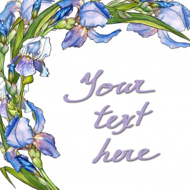 card with irises