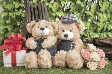 couple teddy bears with rose and present