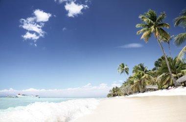 Tropical, empty beach, Saona Island