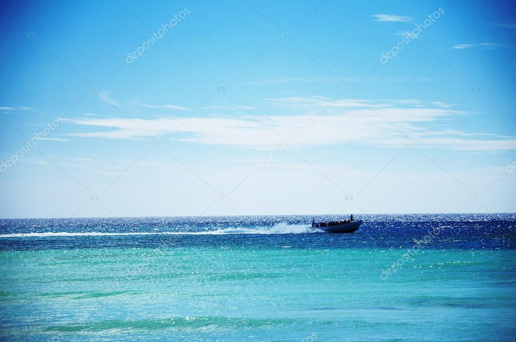 Adventure speed boat sailing in the blue carribean sea