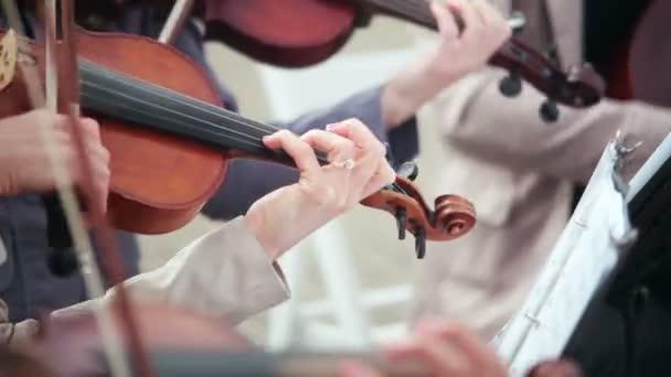 ženy hrají strunné nástroje housle, violoncello