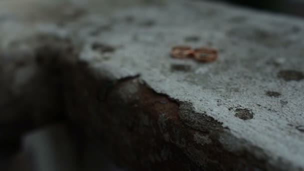 wedding rings on an old cracked stone