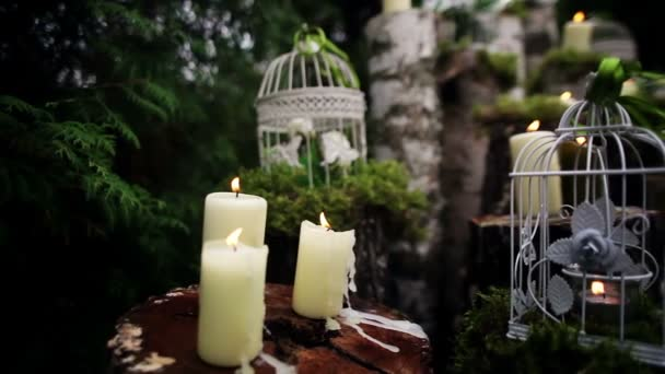 Beautiful Wedding Decor With Candles Birch Logs Stock Video