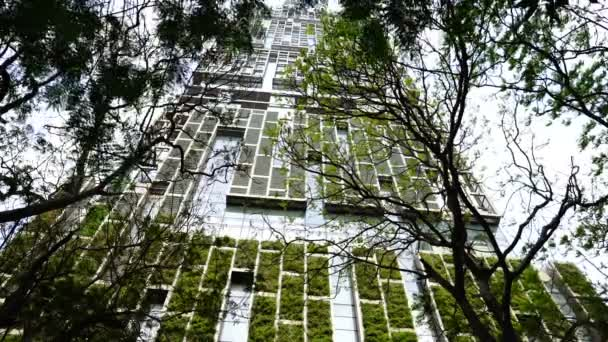 Verdure on the high-rise building.