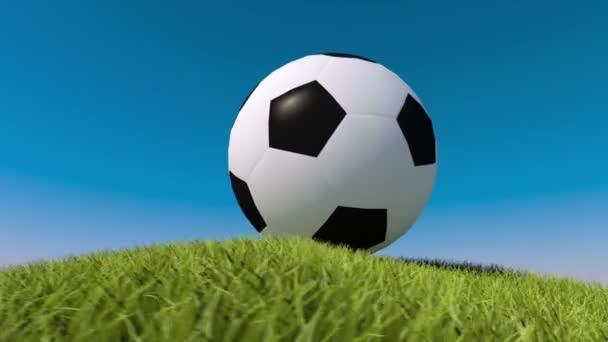 Soccer ball on a grassy hill. 3d animation. Football animation