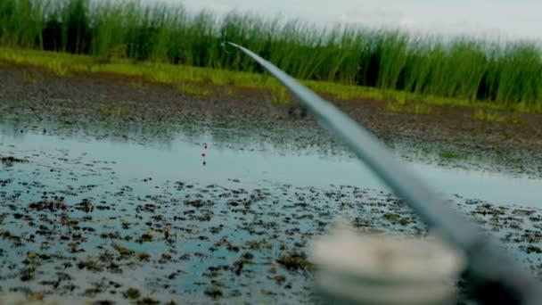Rybaření na jezeře. Rybí tyčinka. Karas, malé boat rybaření. Záběry z kamery Cinema