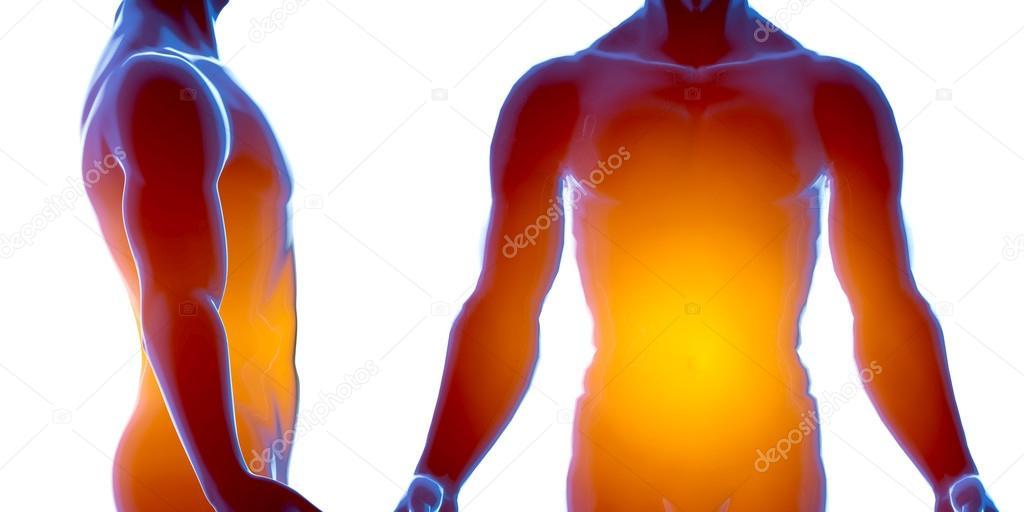 X-Ray menschlichen männlichen Körper. Anatomie-Konzept. 3D render ...