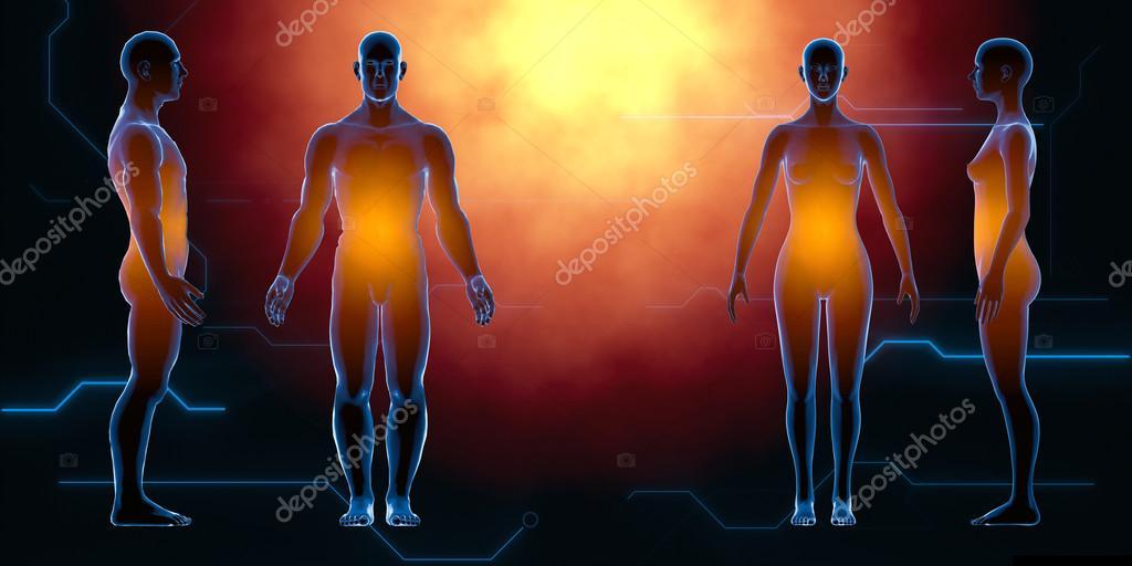Rayos x masculino femenino humano. Concepto de anatomía. Aislar ...