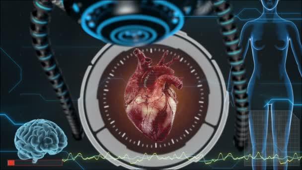 Human Anatomy Human Heart Hud Background Medical Concept