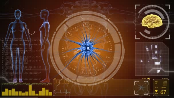 Gehirn Impulse. Neuron-System. Anatomie des Menschen. Gehirn-Arbeit. Übertragung von Impulsen und Generierung von Informationen. HUD-Hintergrund