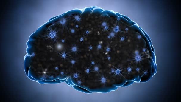 Brain impulses. Neuron system. Human anatomy. Brain work.  transferring pulses and generating information