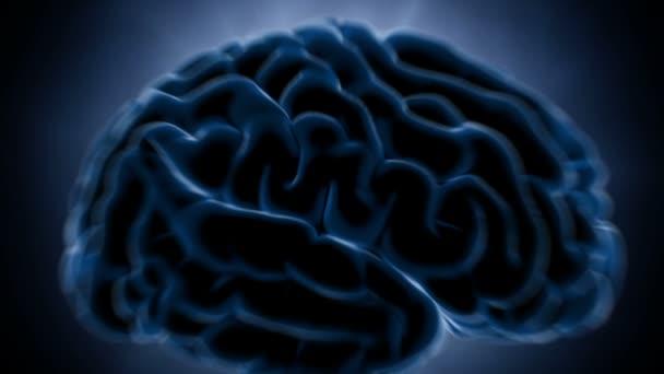 Gehirn Impulse. Neuron-System. Anatomie des Menschen. Gehirn-Arbeit. Übertragung von Impulsen und Generierung von Informationen