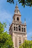Fotografie Blick auf den Glockenturm Giralda