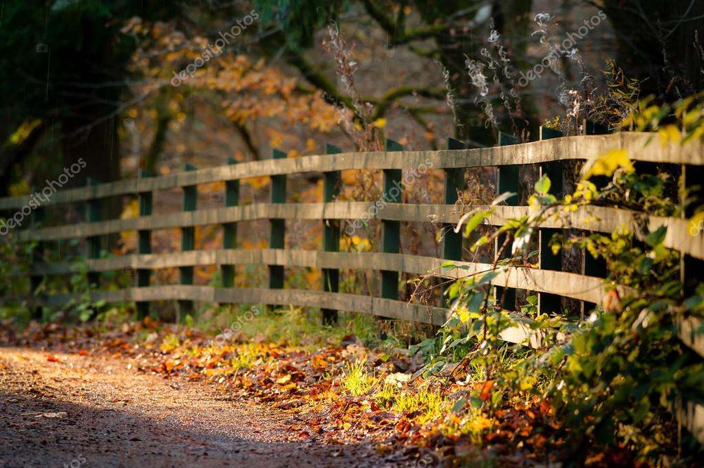Fence and path in autumn park