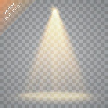 Vector Isolated Spotlight