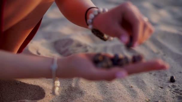 Tizenéves lány feltartani kagyló, amely gyűjtött a strand, a naplemente, a háttérben