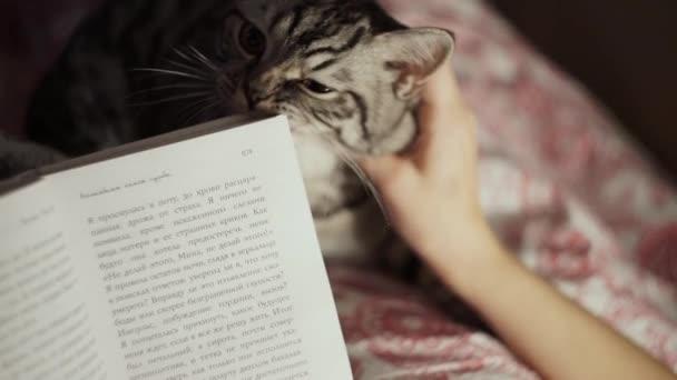 mladá dívka čtení knihy s její kočka domácí