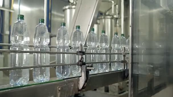 Die Maschine Ist Mineralwasser In Flaschen Gießen Stockvideo