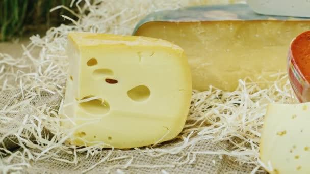 Sada různých kusů sýra. Pracovní deska sýr shop