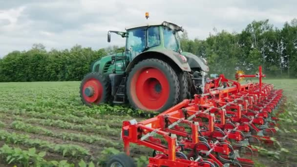 Steadicam shot: Tractor pulls on the field cultivator: which cuts the weeds