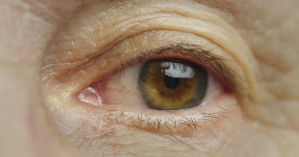 Macro shot of middle-aged womans brown eye