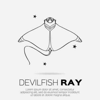 Devil fish ray.