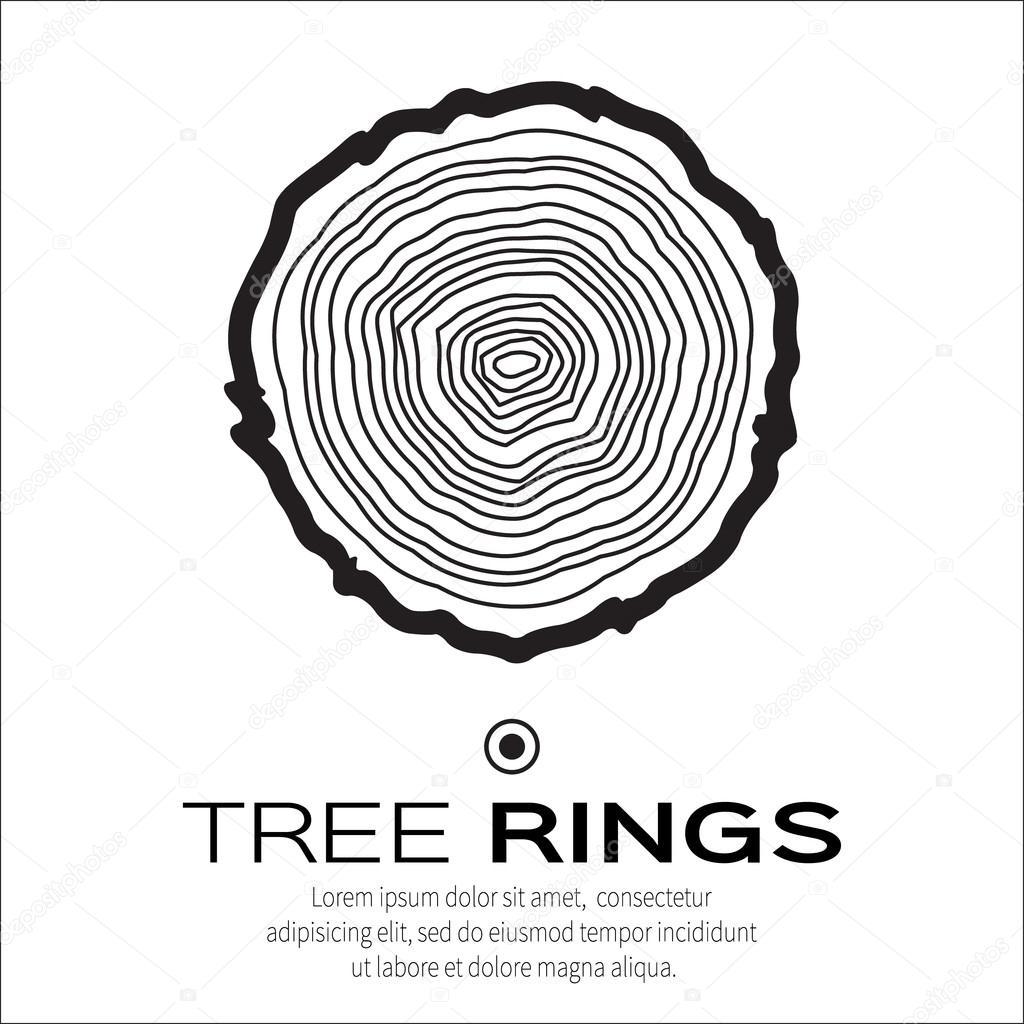 tree rings � stock vector 169 mash3r 86718790