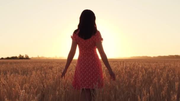 Dívka v červených šatech kráčí během západu slunce mezi zralou pšenicí na poli. Svoboda, zemědělství. Silueta
