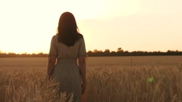Silueta dívky kráčející mezi zralou pšenicí na poli při západu slunce. Svoboda, inspirace.