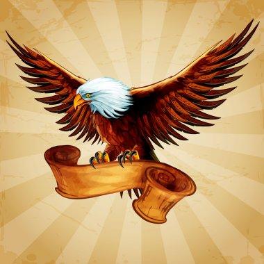 eagle bird animal
