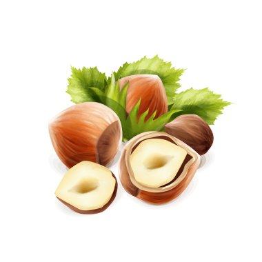 tasty nuts food