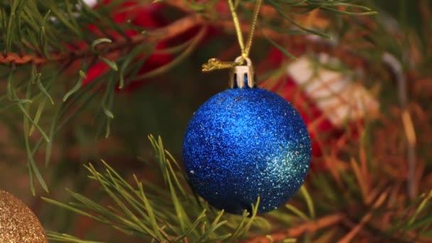 Na Štědrý večer visí na stromě modrý míč a houpe se.