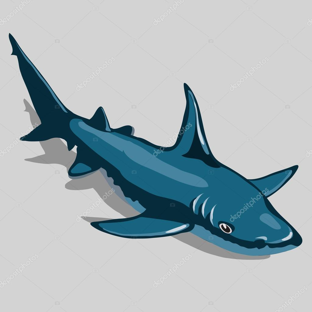 Blue fish closeup, isolated icon for design needs